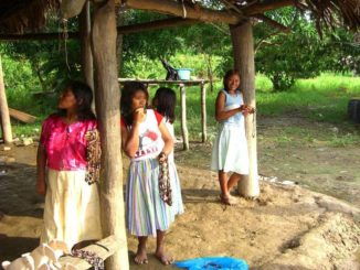 Indianer Frauen im Orinocodelta