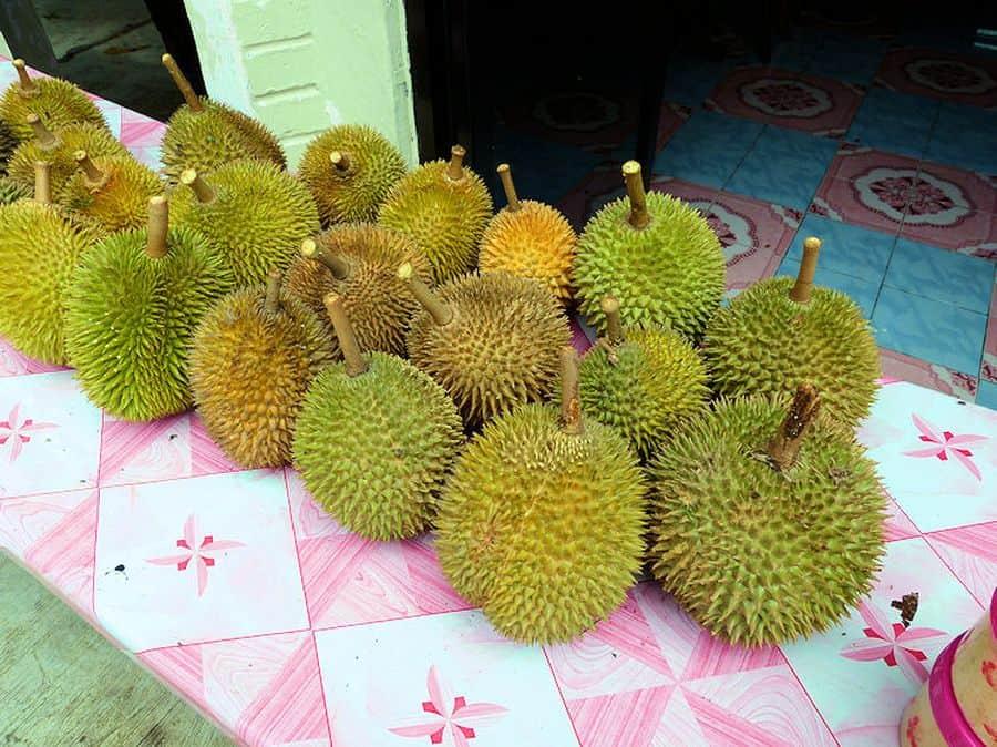 Durian Früchte