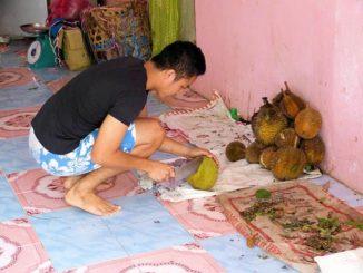 Durian Frucht Händler