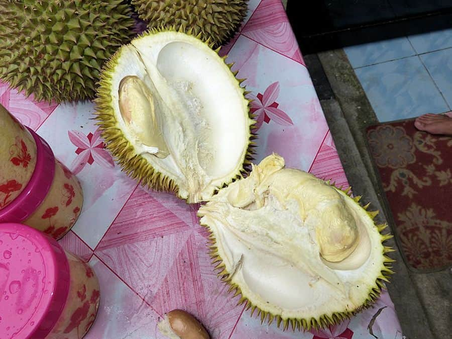 geöffnete Durian Frucht