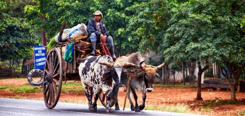 Transport Paraguay