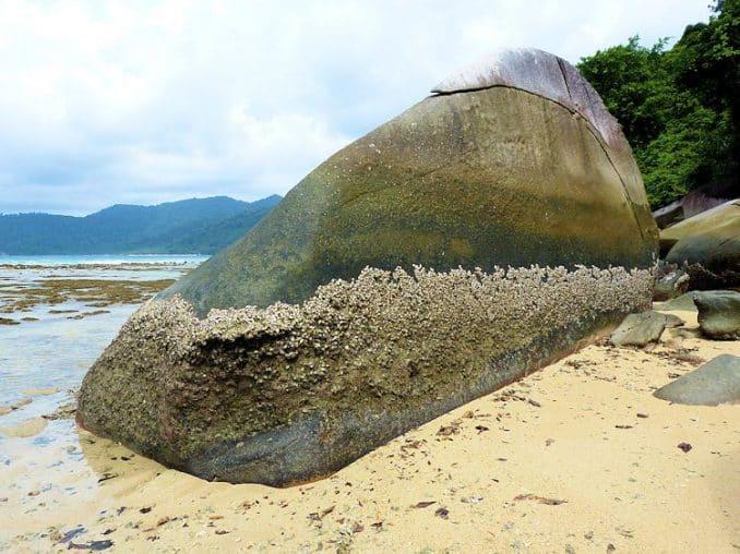 tioman-urlaub-malaysia-bild-197
