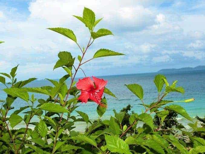tioman-urlaub-malaysia-bild-234