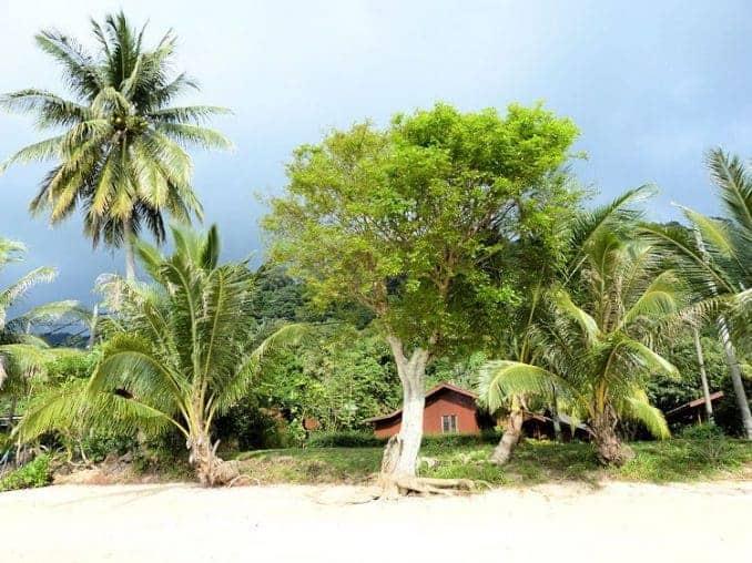 tioman-urlaub-malaysia-bild-418
