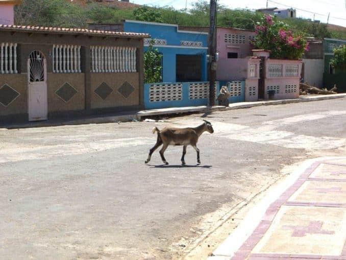 venezuela-urlaub-bild-098