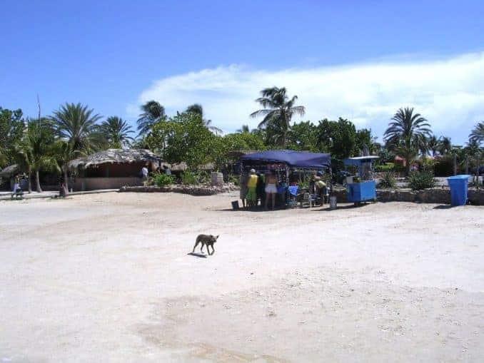 venezuela-urlaub-bild-667