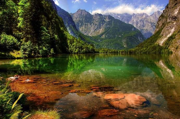 Königssee Alpen Bayern Berchtesgaden
