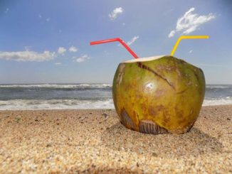 Kokoswasser am Strand